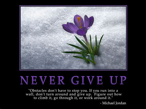 Never Give Up Quotes From The Bible. QuotesGram