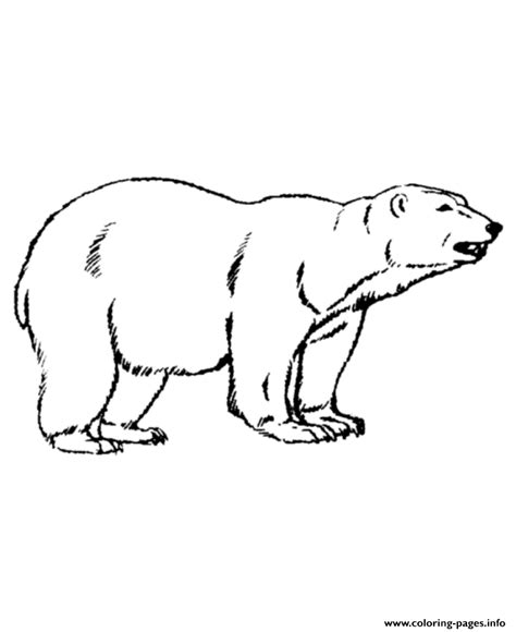 bear coloring pages pdf animal polar bear color pages to print58cb coloring pages