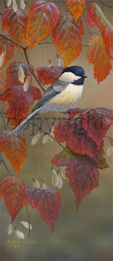 1000 ideas about watercolor bird 1000 images about chickadee painting ideas on