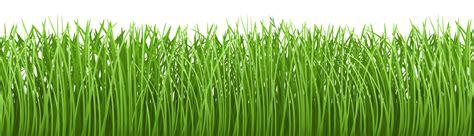 grass png transparent image pngpix 26339 free clip