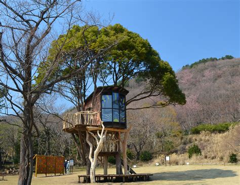 beautiful tree houses prime home design beautiful tree treehouses by takashi kobayashi japan