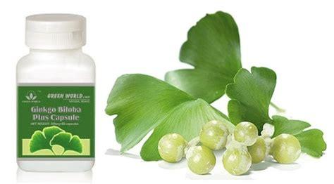 Ginkgo Biloba Green World Herbal Kesehatan Otak cara mengencerkan darah kental dalam tubuh