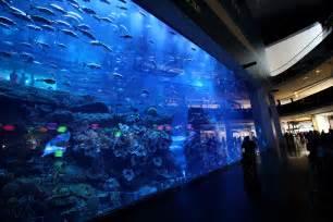 Burj Khalifa Inside the dubai mall