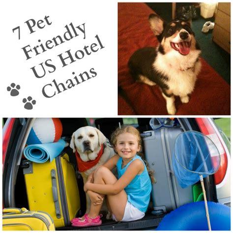 friendly hotel chains pet friendly hotel chains best chain 2018