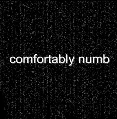 lyrics for comfortably numb pink floyd comfortably numb tumblr