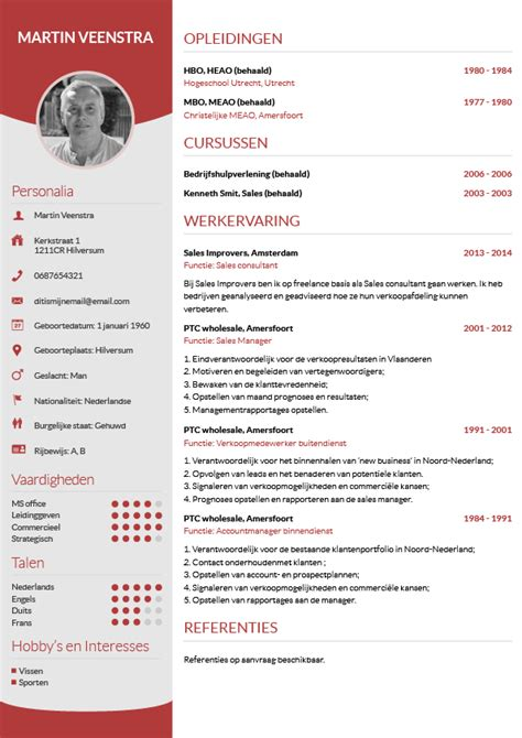 Cv Sjabloon Excel Cv Maken In 3 Stappen Je Curriculum Vitae Downloaden Cv Wizard