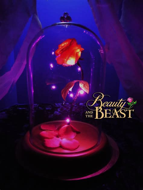 Flower In Dome And The Beast Gift and the beast enchanted disney gift birthday wedding anniversary wedding stuff and