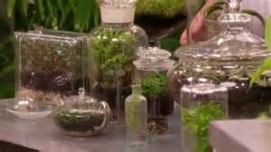 olive garden coupons watertown ny succulents terrariums martha stewart photos