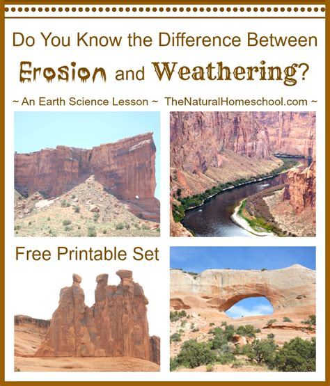 what is the difference between weathering and erosion