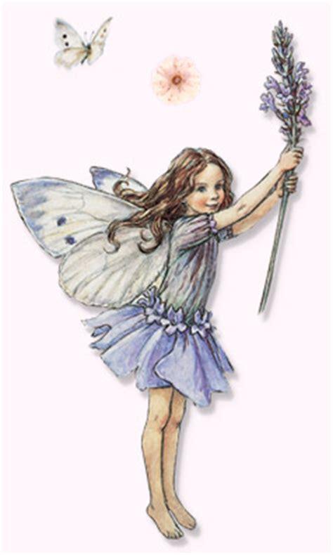 flower fairies of the garden a flowerfairy by cicely barker fairytale