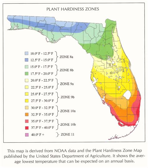 gardening zones florida spearsproperty faq s info