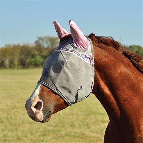 the pink cashel crusader pasture standard fly mask with ears