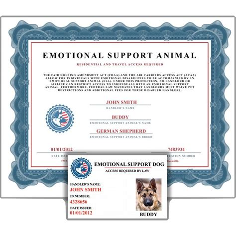 Best 25 Emotional Support Animal Ideas On Pinterest Emotional Support Dog Training Service Emotional Support Animal Id Card Template