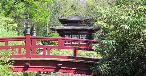 Pflanzen F R Japangarten 1013 by Winterschutz F 252 R B 228 Ume Baum Tipp Baumpflegeportal
