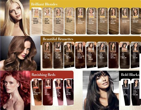 best box hair color best box color 28 images hair color ideas for skin