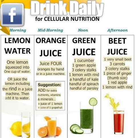 The Idea Dieting Real Facts by Drink These Daily For Cellular Nutrition Easy Fitness