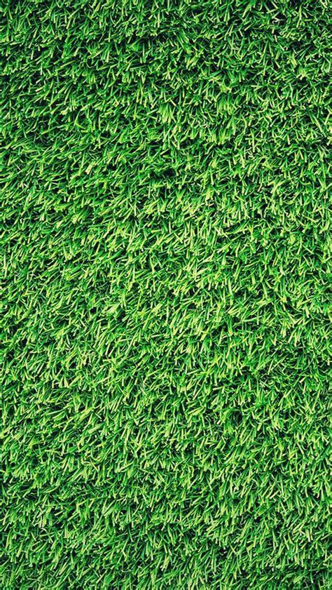 pattern nature grass grass green pattern nature iphone 5s wallpaper iphone