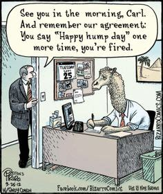 funny wednesday cartoons for the office 1000 images about office humor work jokes on pinterest