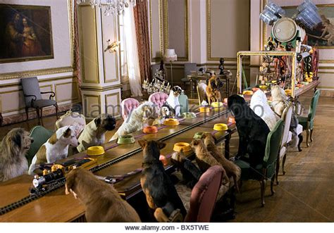 Dogs At Dinner Table by Table Dinner Stock Photos Table Dinner Stock Images Alamy