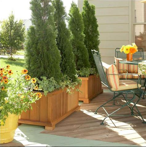 outdoor privacy solution tips ideas cozy areas