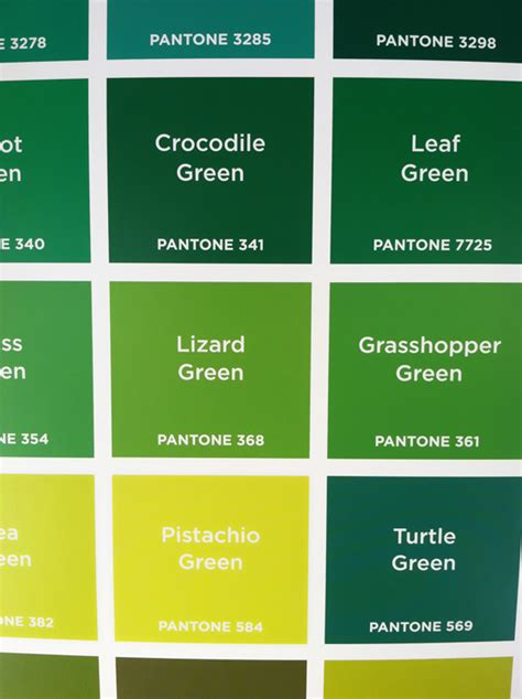 different names of green pantone colors design of the picture book