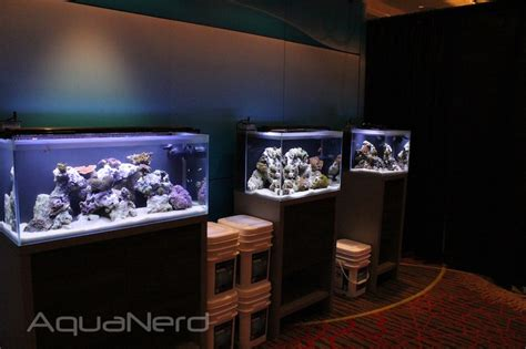 fluval sea 25000k marine and reef light fluval marine reef performance led lights aquanerd