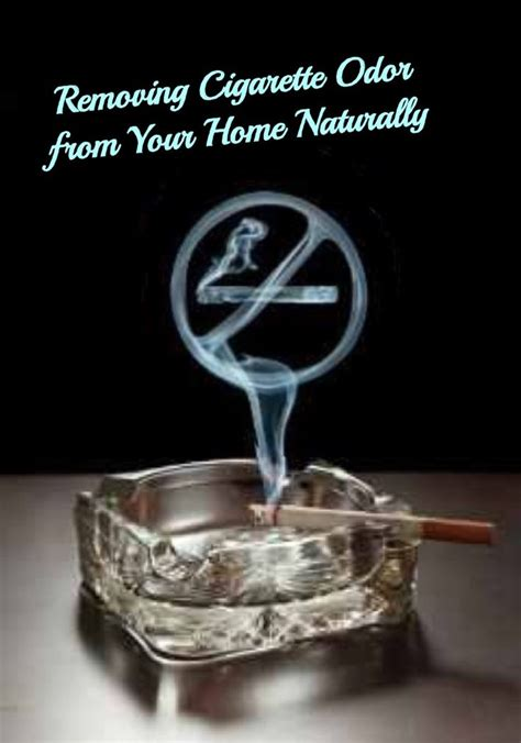 how to remove smoke smell from house top 28 remove smell from house how to remove cigarette smells from your home car