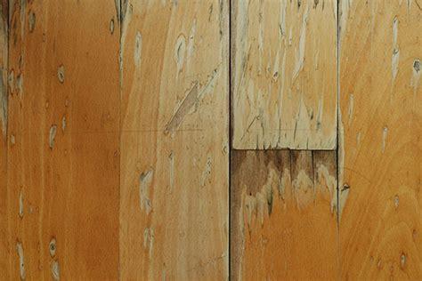 Repair Water Damaged Hardwood Floor Flooring Sw
