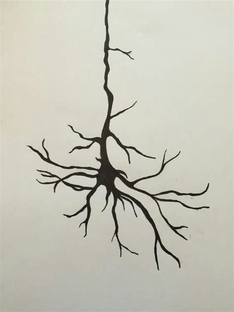 neuron tattoo neuron www imgkid the image kid has it