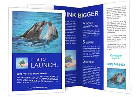 brochure templates water dolphins in water brochure template design id 0000004722