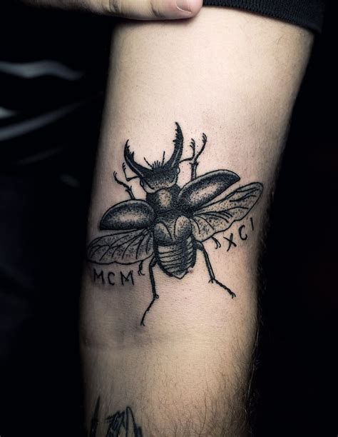 beetle tattoo 10 best images about stag beetle mood board on