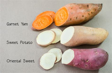 sweet potatoes vs yams veggie primer