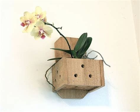 Planter Box Hangers by Wall Planter Hanging Wood Plant Box Orchid Pot Wooden Hanger