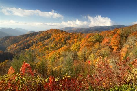 tennessee colors the best fall hikes in the smoky mountains