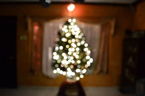 blurred christmas tree pictures photos and images for