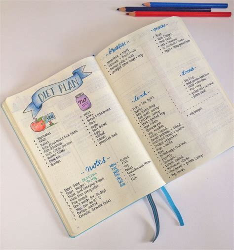 Lose Belly With A Food Journal by Diet And Weight Loss Plan With The Help Of My Bullet