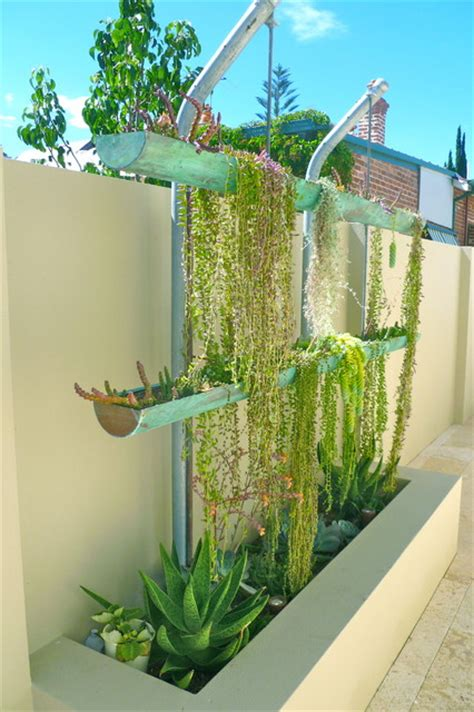 Vertical Garden Perth Contemporary Garden And Vertical Garden Feature