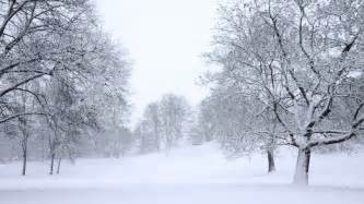 snow images falling snow stock footage video shutterstock