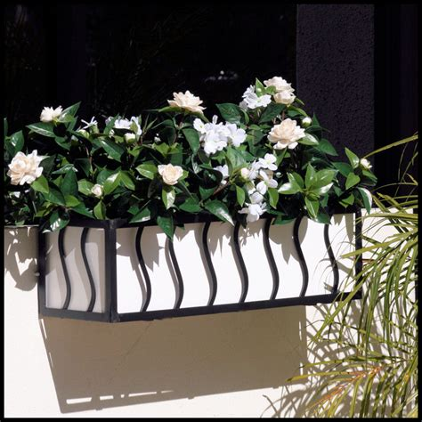 Wrought Iron Window Boxes Planters by Wrought Iron Window Planter Window Box Cages