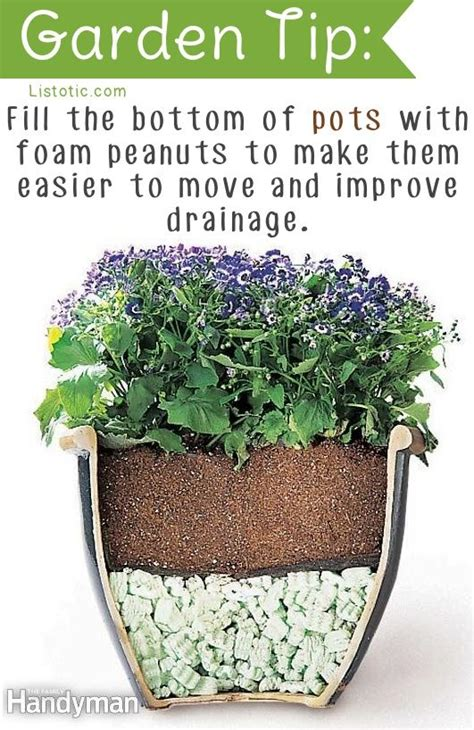 Garden Tips | 20 insanely clever gardening tips and ideas flowers