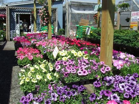 Garden Vineland Nj by Coia S Garden Market Florists 3694 Oak Rd Vineland