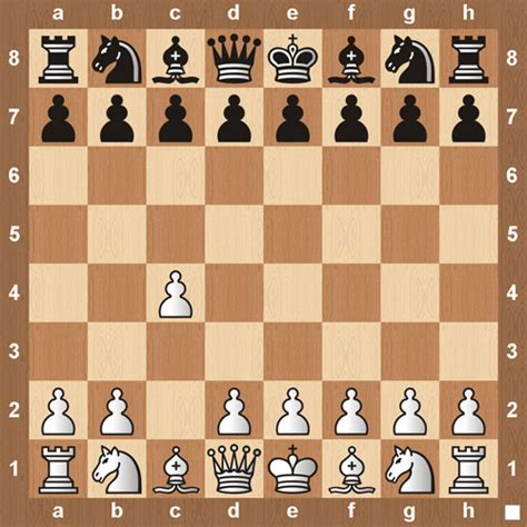 chess openings learn how to play the top 60 openings