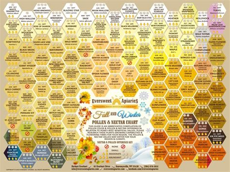 bee color fall winter pollen color nectar chart for honeybees