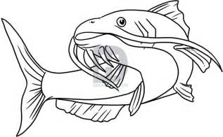 doodle drawing how to draw a catfish step by step drawing guide by