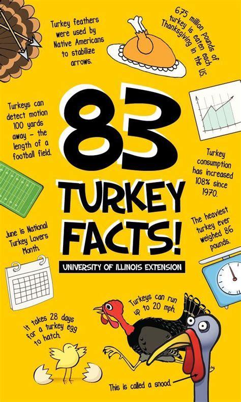 thanksgiving language arts ideas images