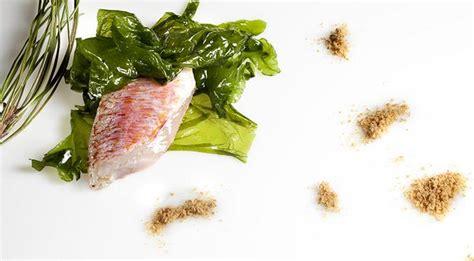 cucinare le alghe cucinare le alghe le ricette per usare le alghe in cucina