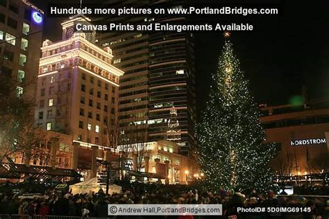 portland christmas tree lighting 2010 photo 5d0img69145