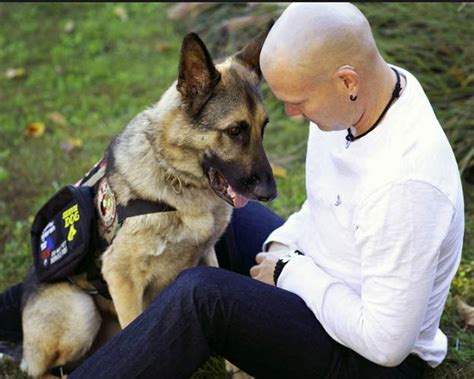 how to register your as a service animal how to make your a service