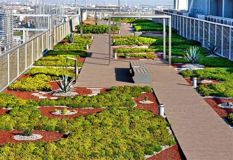 imagenes azoteas verdes los techos verdes se instalan en las principales urbes del