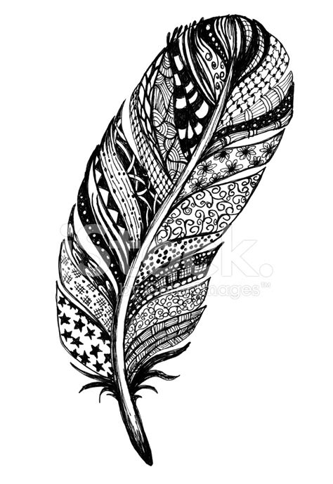 doodled ink drawing feather stock photos freeimages com